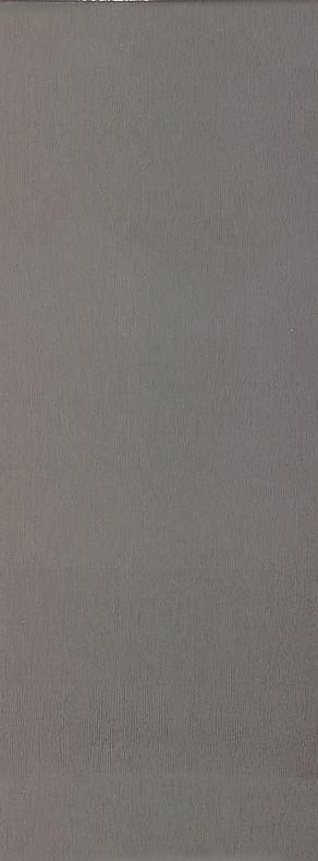 CARR TREND GREY 25 X 50  WALL 1,38 M²/PQ