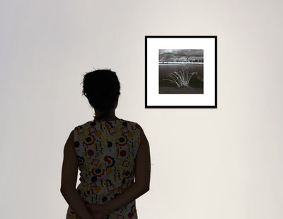 Grasses, Niobrara River, gallery view
