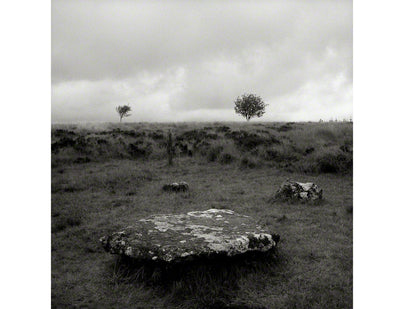 Two Trees and Stone Circle, Dartmoor