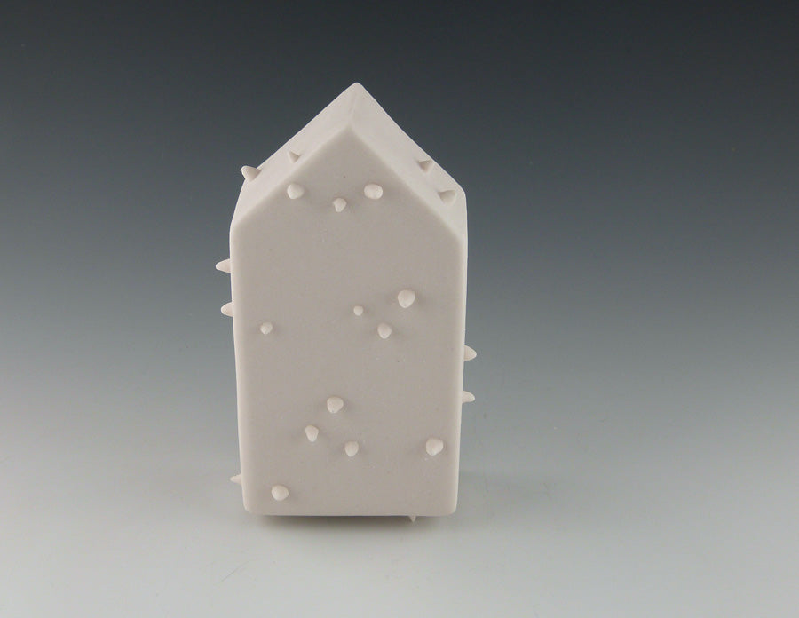 White Spikes Wall House