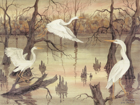 3 Egrets in the Bayou