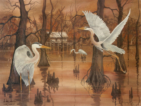 Blue Herons in the Bayou