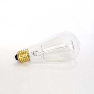 Squirrel Cage Vintage Light bulb