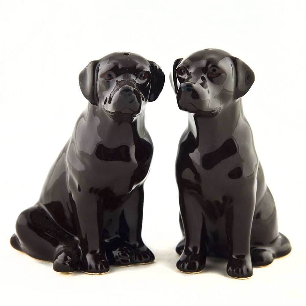 Chocolate Labrador Salt & Pepper Shakers