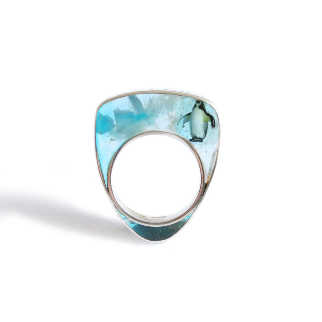 """I Wish I Had A Penguin"" Silver and Resin Ring"