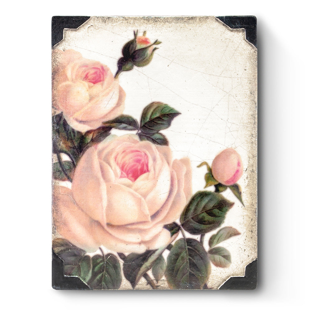 Gentle Rose T464 - Sid Dickens Memory Block