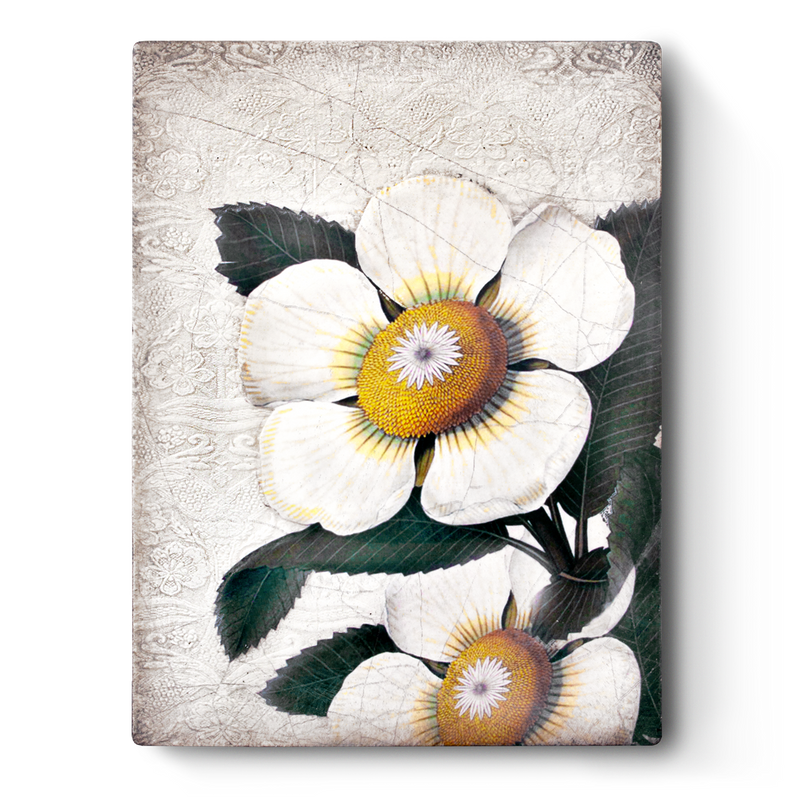 White Blossoms T487 - Sid Dickens Memory Block