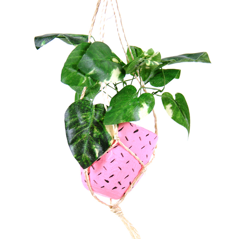 Hanging Plant Decoration