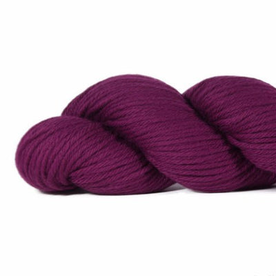 Rosy Green Wool Cheeky Merino Joy - Blackberry Sorbet (105) - Sport Weight Yarn