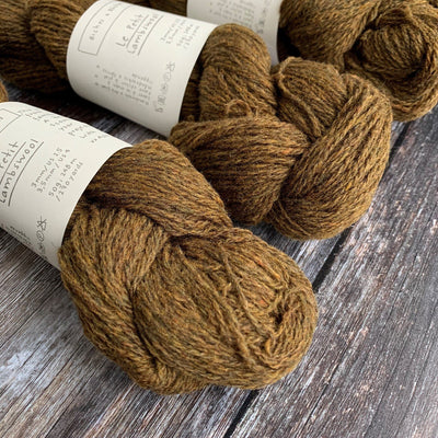 Biches & Bûches Le Petit Lambswool - Dark Gold - 4ply Knitting Yarn