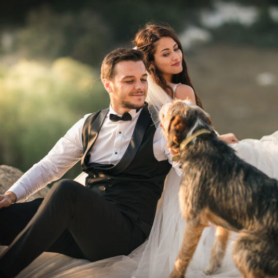Including your dog on your wedding day