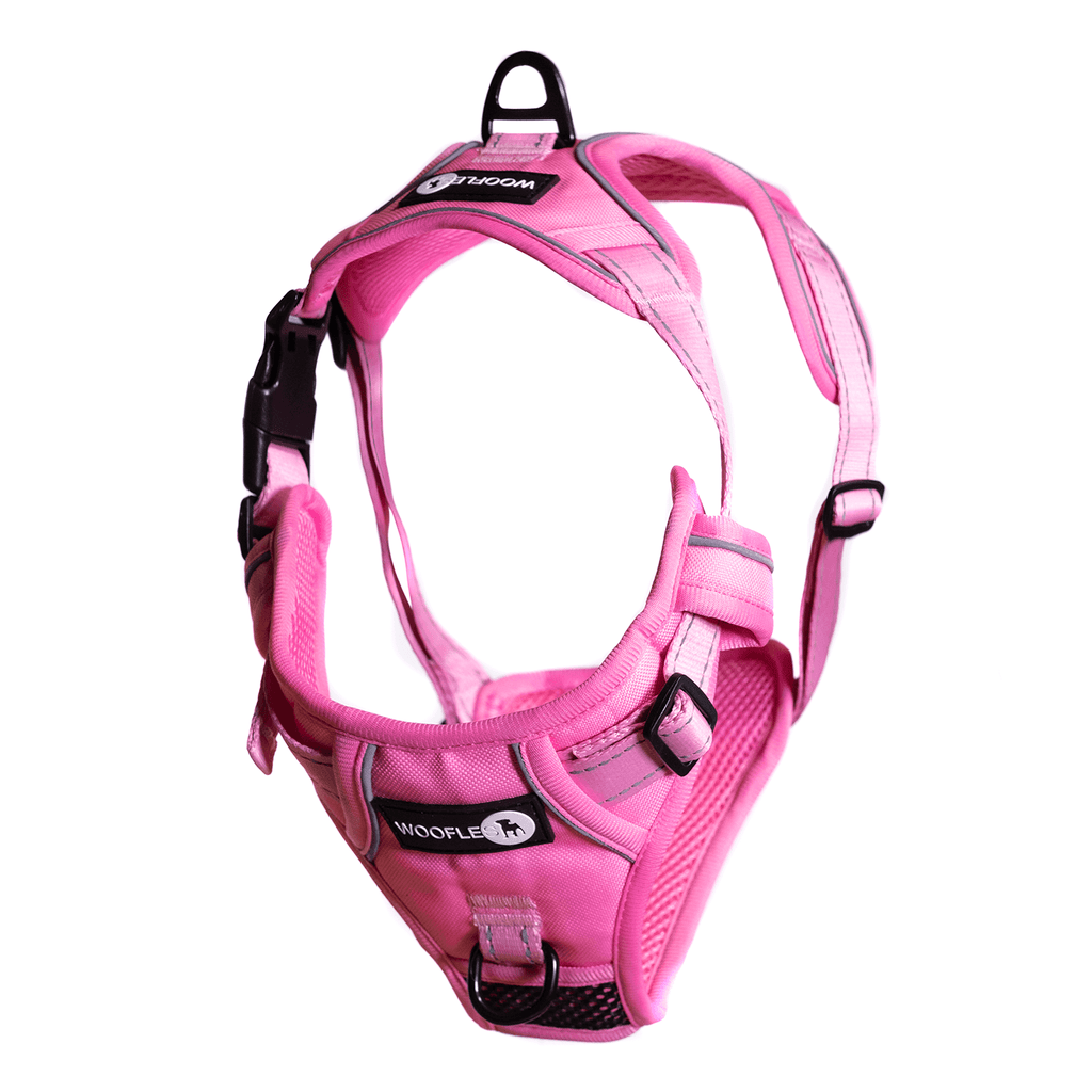 Endurance Harness Pink Hanging