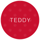 Example Front of Woofles Plain Paws Red ID Tag