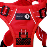 Endurance Harness Red 2nd Hanging