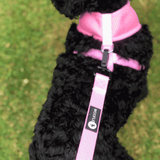 Woofles Dual AirMesh Dog Harness - Pink