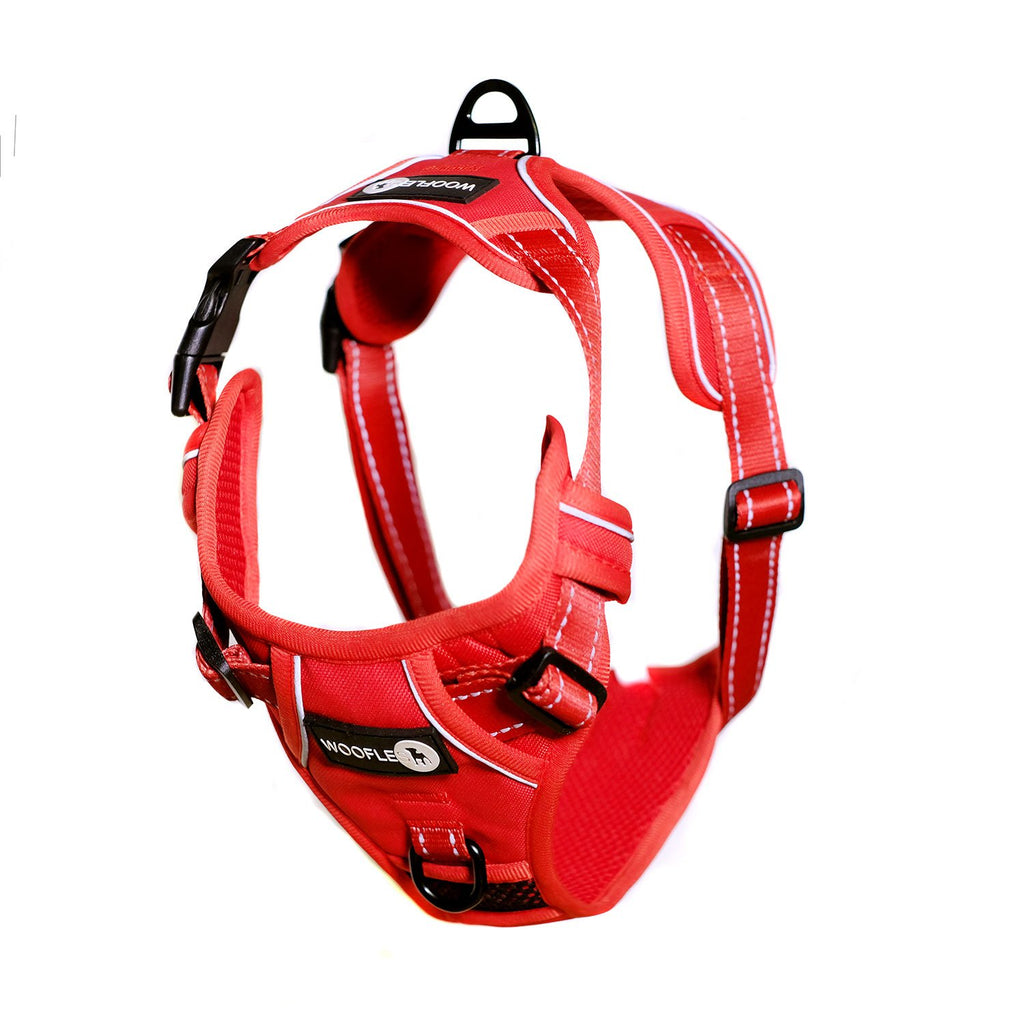 Endurance Harness Red Hanging