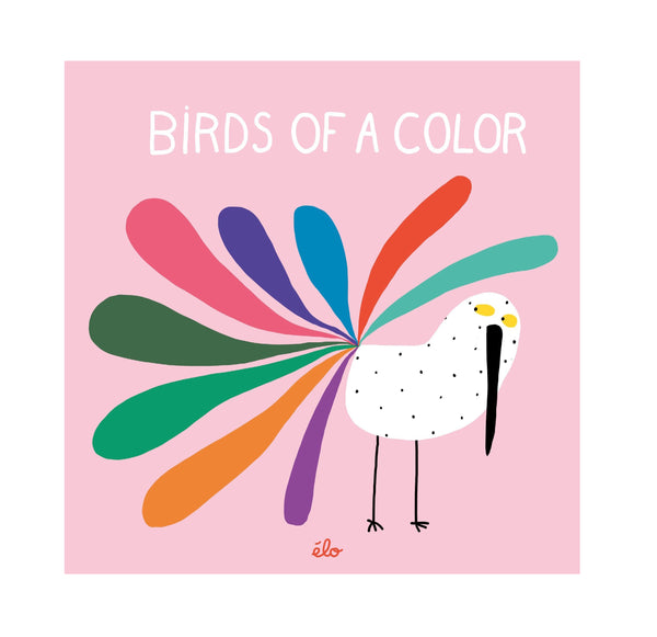 Birds of  Color Book