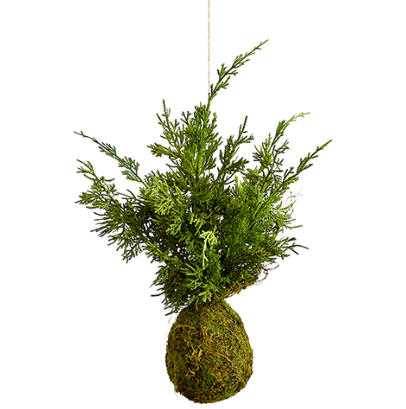 "20"" Hanging Juniper Tree"