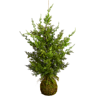 "36"" Hanging Juniper Tree"
