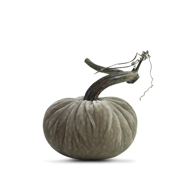Putty Velvet Pumpkin