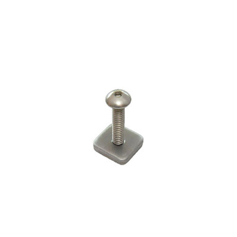 FCS Longboard Screw and Plate