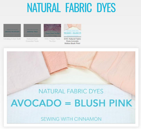 Natural Fabric Dyes Master Class Video Course