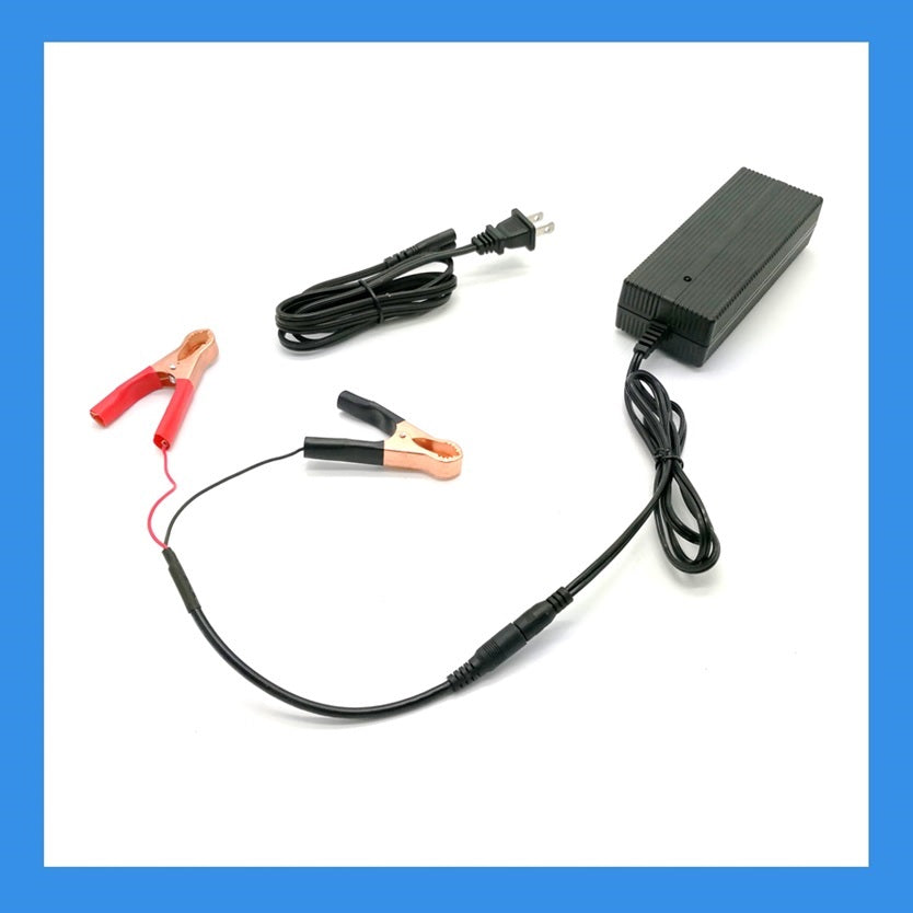 29.2V, 2A AC-to-DC Charger (Alligator) for LiFePO4 Batteries (BPC-2402C)