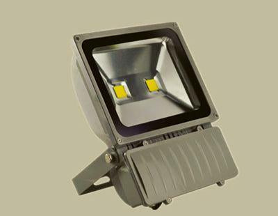 Bioenno Power LED Floodlight, 100 Watts (BLI-F100DH)