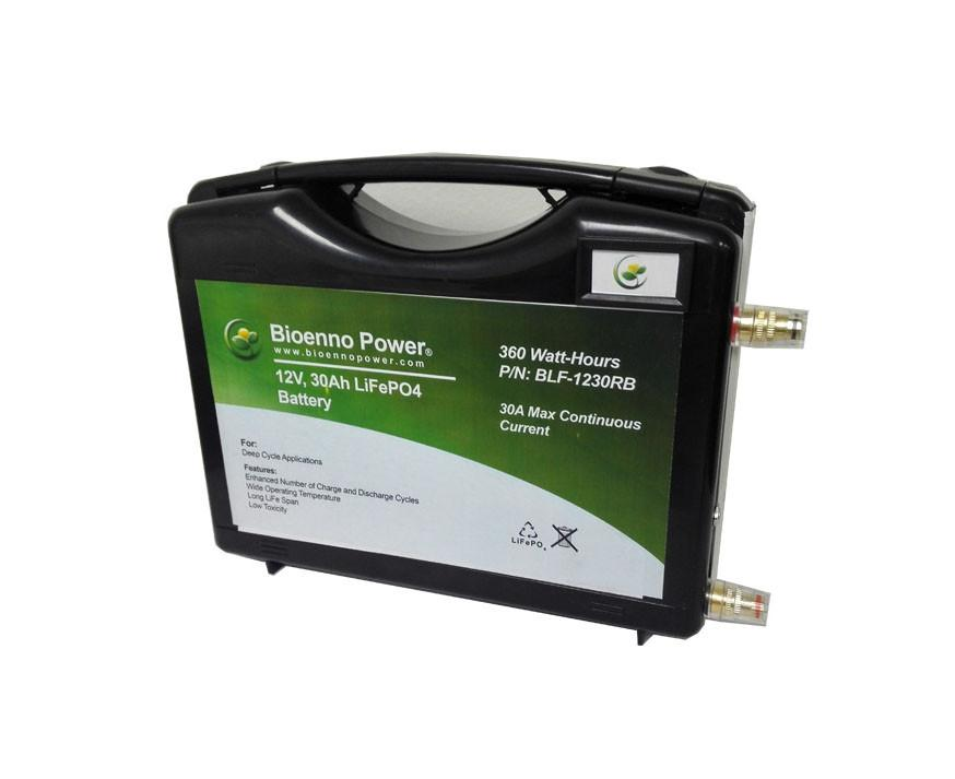 Lithium Iron Phosphate (LiFePO4) Battery Model (BLF-1230RB)