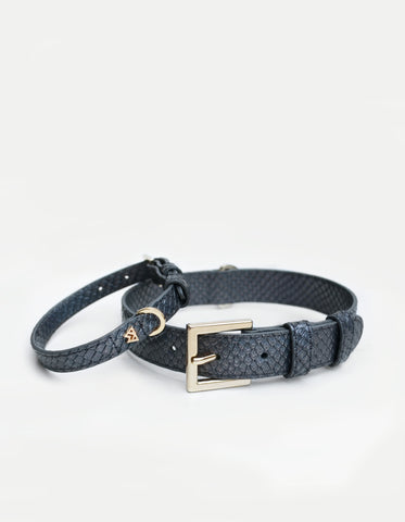 Cloud K9 Collar in Iridescent Slate