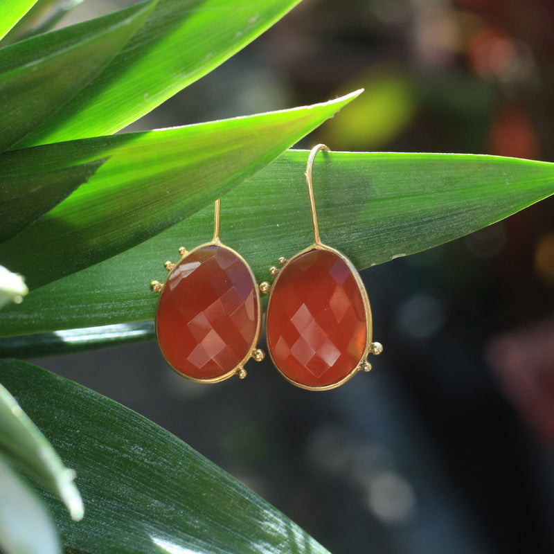 AMAZONIA RED ONYX DROP EARRINGS