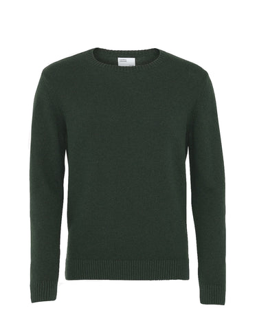 Colorful Standard Merino Wool Crew hunter green