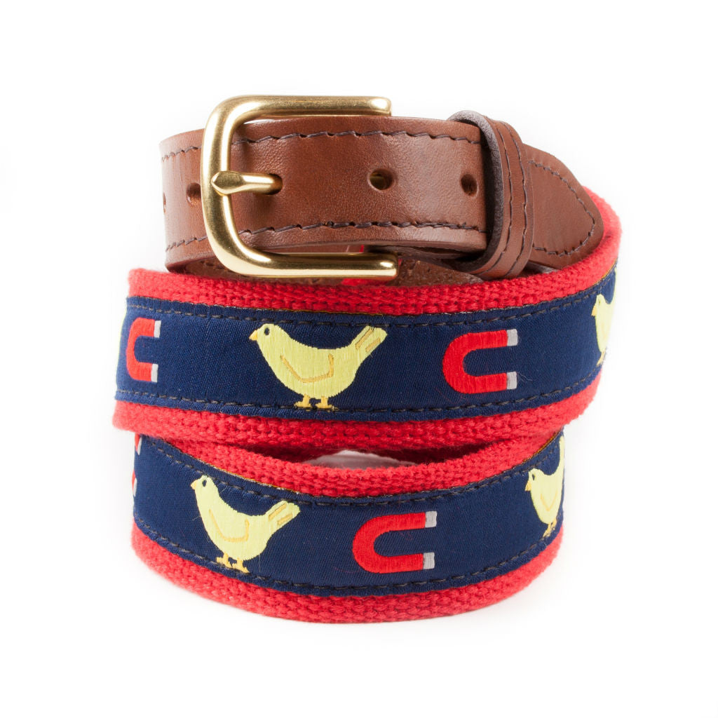 Preppy Chick Magnet Ribbon Belt