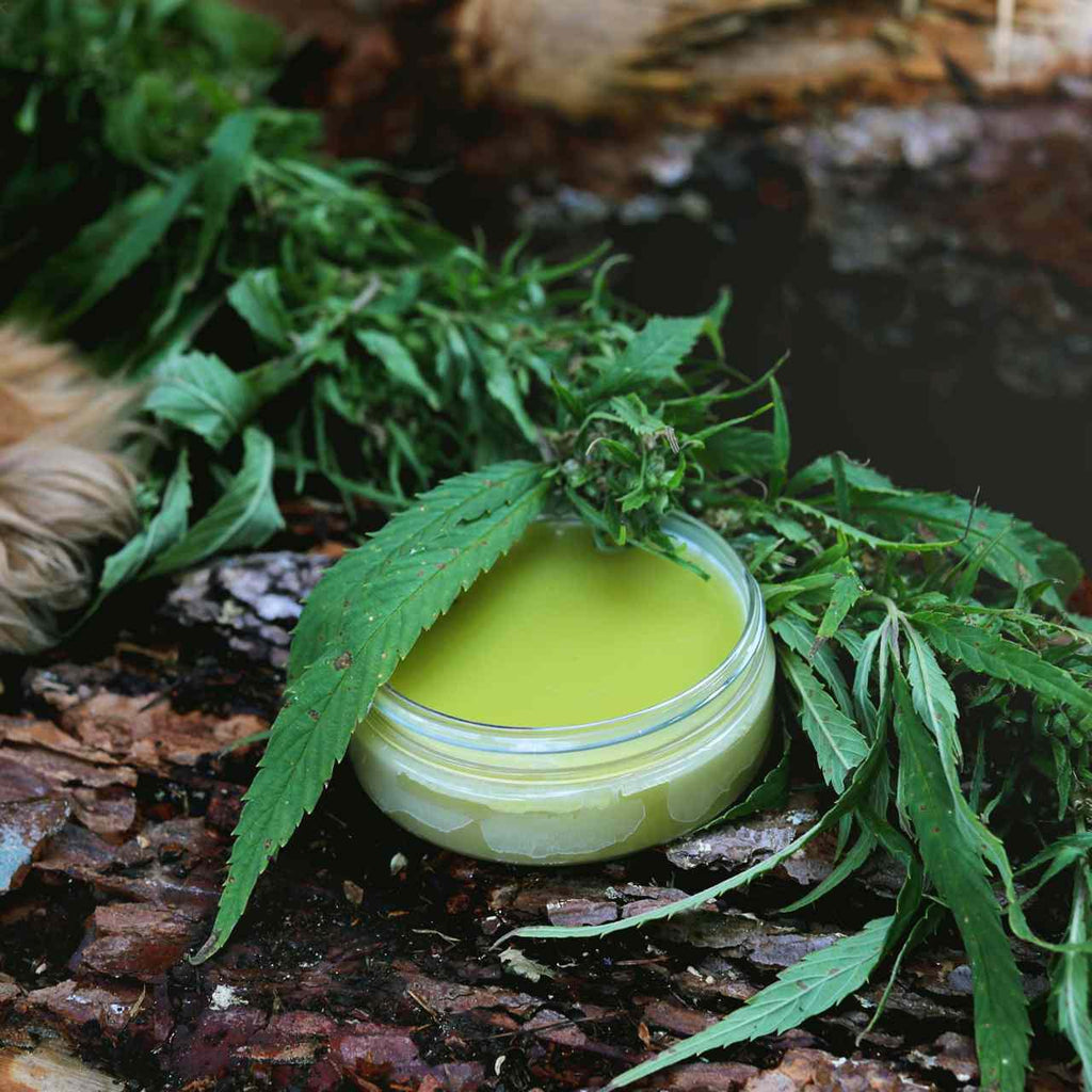 Hemp By Hownd Skin, Nose & Paw Balm