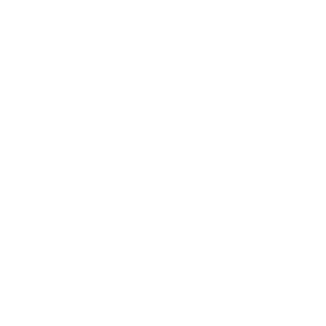 Maize Gourmet Popcorn & Ice Cream