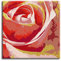 Red rose gold outline  Paint by Numbers Kit - Texture Of Dreams