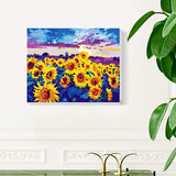 "Sunflower Field Paint by Numbers Kit 16"" x 20"" - Texture Of Dreams"