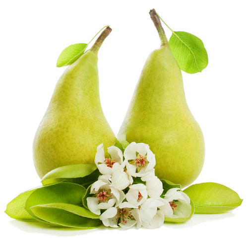 English Pear & Freesia Fragrance Oil | Truly Personal | Candles, Wax Melts, Soap, Bath Bombs
