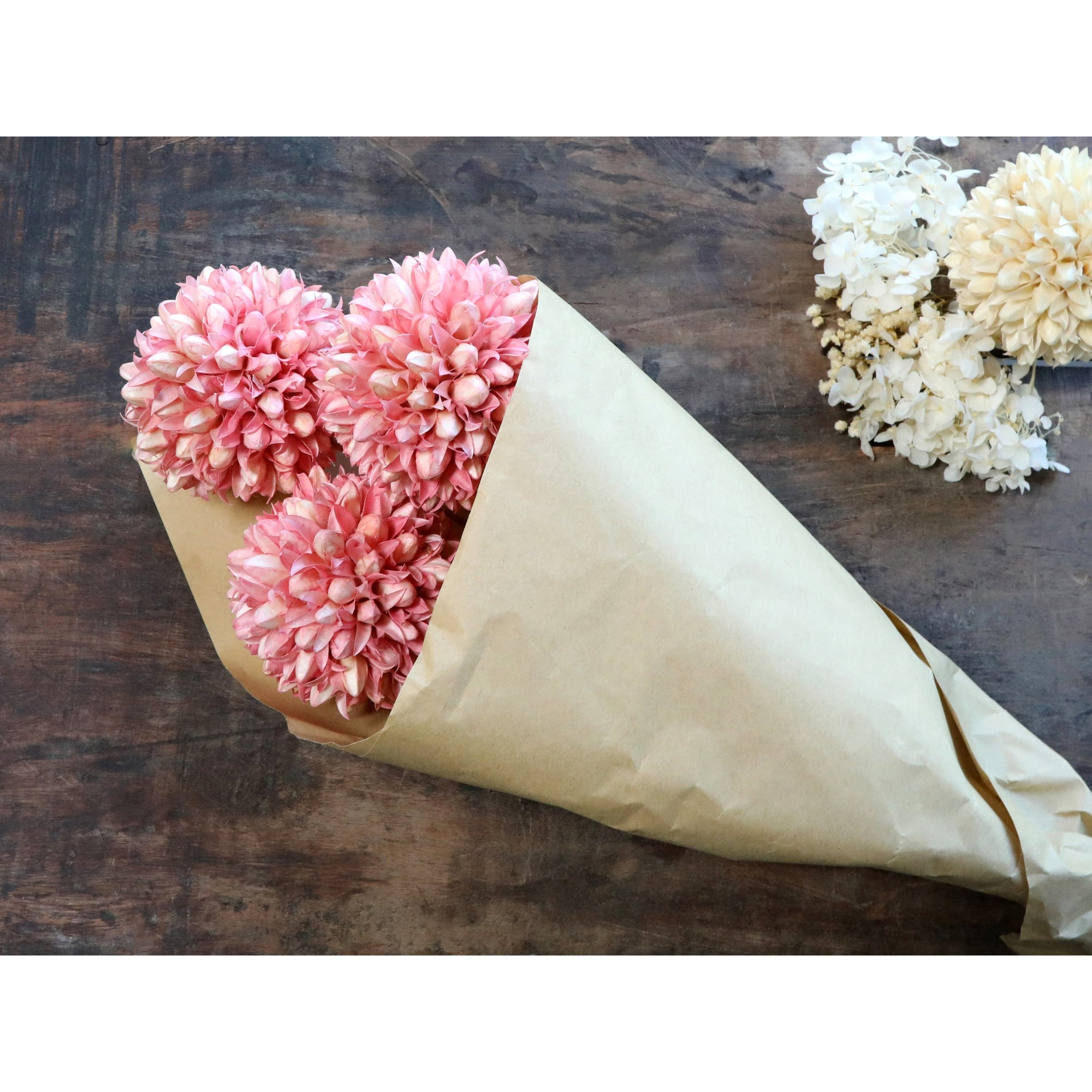 Chic-Antique-Fleur-Dried-Snowball-FlowersPink
