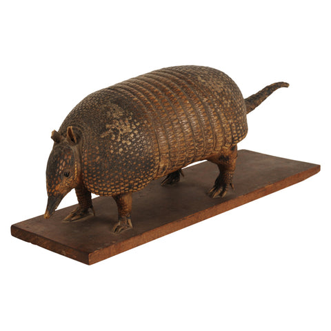 Taxidermy armadillo, early 20th century