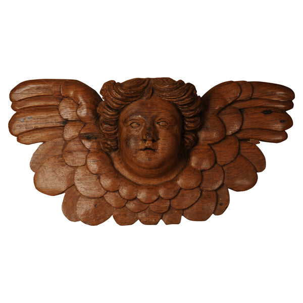 Carved oak winged head of a cherub, Holy Roman Empire, 18th century, Decorative Object - Kate Thurlow | Gallery Forty One