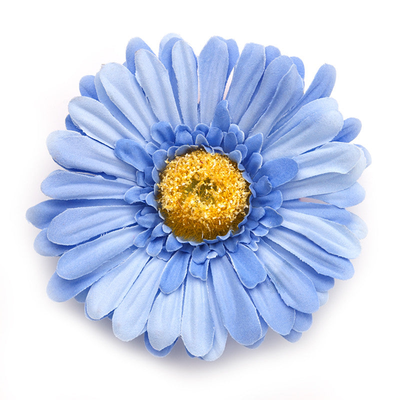 Big Daisy, Blue
