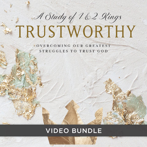 Trustworthy Digital Video Bundle