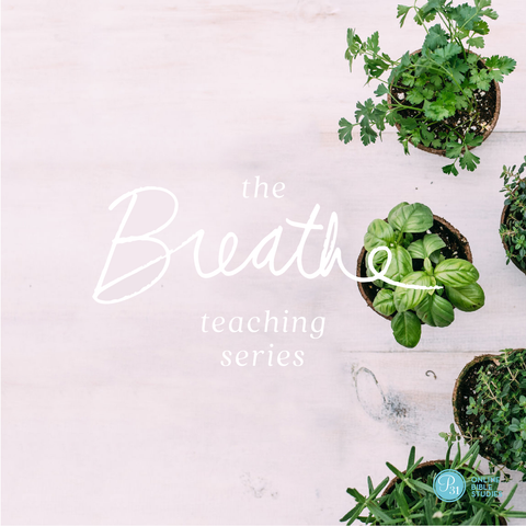 Will I Ever Be Satisfied? The Breathe Teaching Series