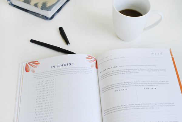 Christ Alone Experience Guide