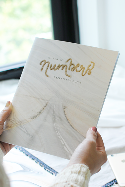 The Book of Numbers Experience Guide