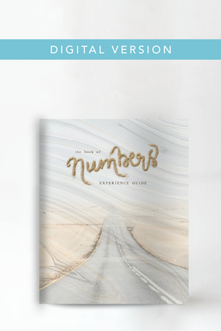 The Book of Numbers Experience Guide (DIGITAL VERSION)