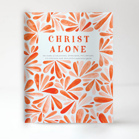 Christ Alone Experience Guide - BACK ORDER