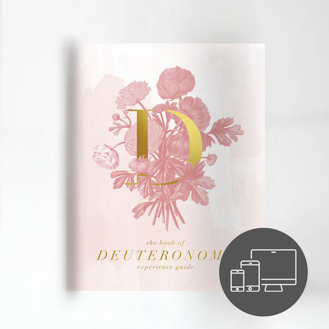 The Book of Deuteronomy Experience Guide (DIGITAL VERSION)