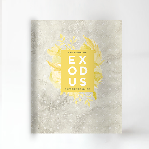The Book of Exodus Experience Guide